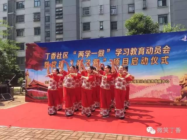 """丁香社区党委召开""""两学一做""""学习教育"""