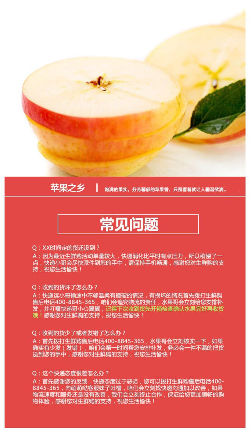 大沙河苹果4.jpg